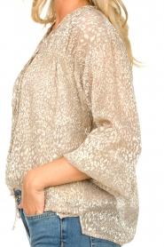 Dante 6 |  Leopard print blouse Lorelie | beige  | Picture 7