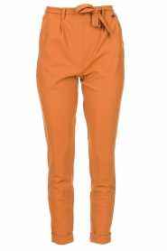D-ETOILES CASIOPE |  Travelwear pants with tie belt Antigua | camel  | Picture 1