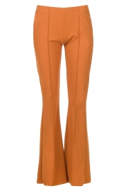 D-ETOILES CASIOPE |  Travelwear flair trousers Rodez | camel  | Picture 1