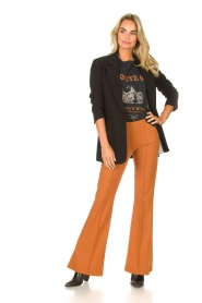 D-ETOILES CASIOPE |  Travelwear flair trousers Rodez | camel  | Picture 3