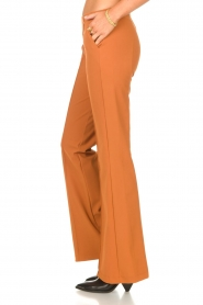D-ETOILES CASIOPE |  Travelwear flair trousers Rodez | camel  | Picture 5
