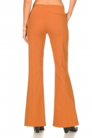 D-ETOILES CASIOPE |  Travelwear flair trousers Rodez | camel  | Picture 7