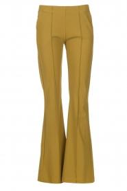 D-ETOILES CASIOPE | Travelwear flared broek Rodez | groen  | Afbeelding 1