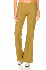 D-ETOILES CASIOPE | Travelwear flared broek Rodez | groen  | Afbeelding 4