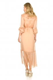 Dante 6 |  Ruffle maxi dress Royalty | nude  | Picture 6