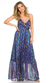 ba&sh |  Maxi dress Rosy | blue  | Picture 2