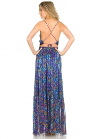 ba&sh |  Maxi dress Rosy | blue  | Picture 4