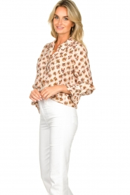 Dante 6 |  Print blouse Willow | brown  | Picture 5