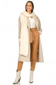 Dante 6 |  Leather paperbag pants Duncan | camel  | Picture 2
