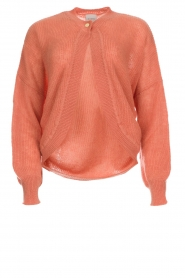 Dante 6 |  Cardigan with button Fade | old pink   | Picture 1