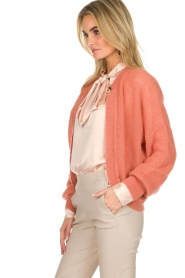 Dante 6 | Vest met knoopje Fade | oud roze  | Afbeelding 4