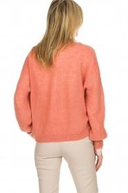 Dante 6 | Vest met knoopje Fade | oud roze  | Afbeelding 5
