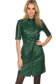 Dante 6 | Leren jurk Emmit | groen  | Afbeelding 5