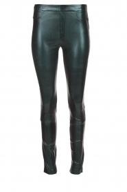 Dante 6 |  Metallic leather legging Tyson | green  | Picture 1