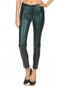Dante 6 |  Metallic leather legging Tyson | green  | Picture 3