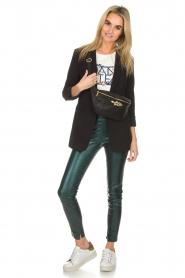 Dante 6 |  Metallic leather legging Tyson | green  | Picture 2