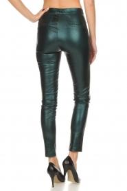 Dante 6 |  Metallic leather legging Tyson | green  | Picture 5