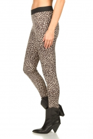 Les Favorites |  Leopard printed legging Vallery  | animal print  | Picture 5