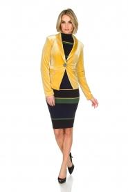 NIKKIE | Velvet blazer Lulana | geel  | Afbeelding 3