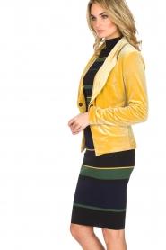 NIKKIE | Velvet blazer Lulana | geel  | Afbeelding 4