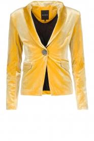 NIKKIE | Velvet blazer Lulana | geel  | Afbeelding 1