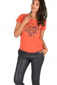 Leon & Harper | T-shirt Bee | oranje  | Afbeelding 2