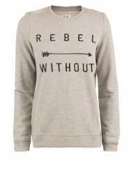 Trui Rebel Without | grijs