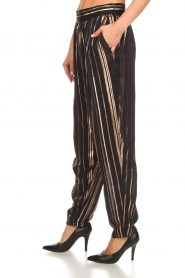 IRO |  Trousers with gold striped True Love | black  | Picture 5