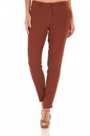 Dante 6 | Pantalon Russel | Tamarinde bruin  | Afbeelding 2