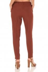 Dante 6 | Pantalon Russel | Tamarinde bruin  | Afbeelding 5