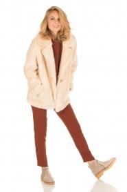 Dante 6 | Pantalon Russel | Tamarinde bruin  | Afbeelding 6
