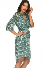 Lolly's Laundry |  Printed dress Jade | green  | Picture 5