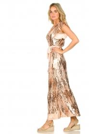 Dante 6 |  Maxi wrap dress with sequins Dancer | rose  | Picture 5