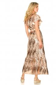 Dante 6 |  Maxi wrap dress with sequins Dancer | rose  | Picture 6
