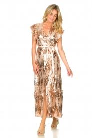 Dante 6 |  Maxi wrap dress with sequins Dancer | rose  | Picture 3