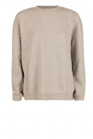 IRO | Oversized sweater Thyma | grijs  | Afbeelding 1