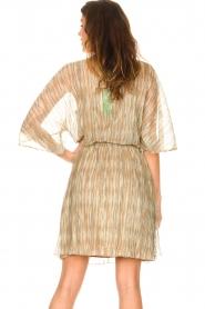 Dante 6 |  Ruffle dress with lurex Cadya | metallic  | Picture 7