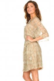 Dante 6 |  Ruffle dress with lurex Cadya | metallic  | Picture 6