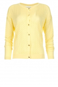 Lolly's Laundry |  Ajour cardigan Dasy | yellow  | Picture 1