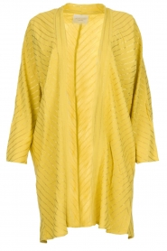 Lolly's Laundry |  Cardigan with golden stripes Kimmie | yellow  | Picture 1