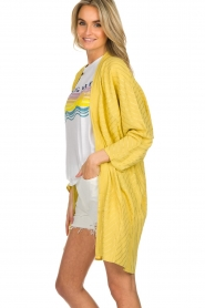 Lolly's Laundry |  Cardigan with golden stripes Kimmie | yellow  | Picture 4