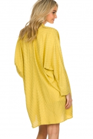 Lolly's Laundry |  Cardigan with golden stripes Kimmie | yellow  | Picture 5
