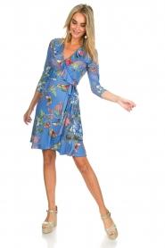 Hale Bob |  Dress Janelle | blue   | Picture 3