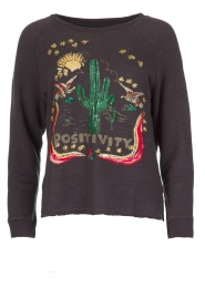 Leon & Harper | Sweatshirt Cactus | grijs  | Afbeelding 1