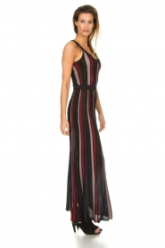 Silvian Heach |  Striped glitter maxi dress Mukdahan | black  | Picture 5