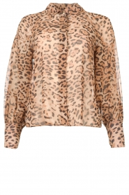 Kocca    Blouse with panther print Vinca   brown    Picture 1