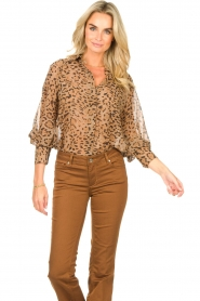 Kocca    Blouse with panther print Vinca   brown    Picture 4