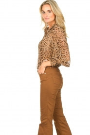 Kocca    Blouse with panther print Vinca   brown    Picture 6