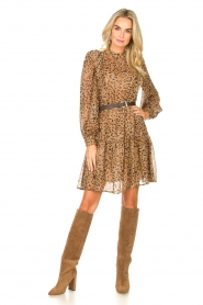 Kocca |  Dress with panther print Ranuncolo | brown  | Picture 3