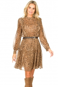 Kocca |  Dress with panther print Ranuncolo | brown  | Picture 2